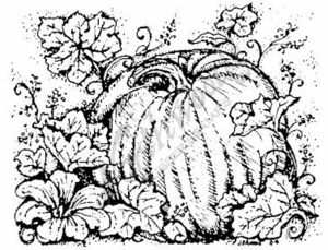 M3746 Pumpkin With Blossoms and Leaves-Medium