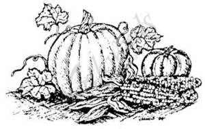 M3755 Pumpkins and Indian Corn