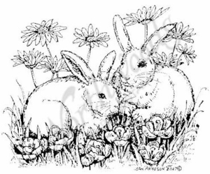 Bunny Pair In Flowers M5045