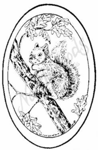 M6883 Squirrel Oval