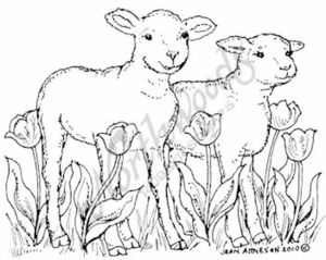 M7265 Lambs With Tulips
