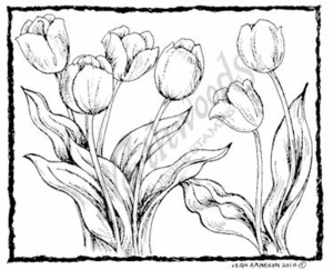 M7329 Tulips In Deckle Rectangle