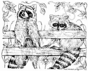M7362 Two Raccoons On Fence