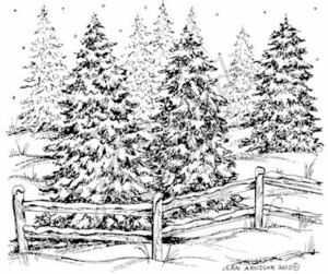M7671 Snowy Pines And Fence
