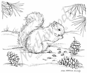 M7685 Squirrel With Pine Cones