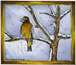 M8892 Evening Grosbeak On Winter Branch