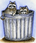 M9035 Two Raccoons In Can