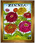 M9079 Zinnia Northwoods Seeds
