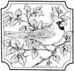 Single Cardinal In Notched Square MM8294