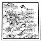 MM8333 Two Chickadees In Square