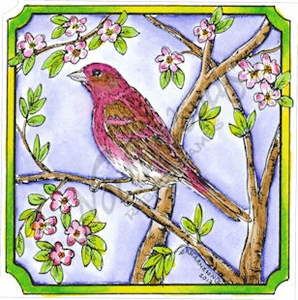 Purple Finch In Notched Square MM8417