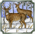 Deer Pair In Notched Square MM8841