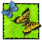 Deckle Square With Two Butterflies A MM8953