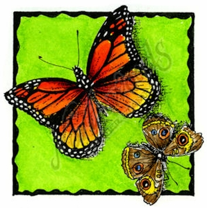 Deckle Square With Two Butterflies B MM8953