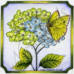 Hydrangea and Butterfly In Notched Square #3 MM8978