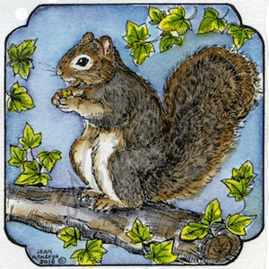Squirrel In Curved Frame MM9036
