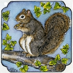 MM9036 Squirrel In Curved Frame