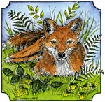 Fox In Single Notched Square MM9055