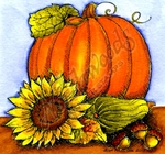 Pumpkin, Sunflower And Acorns MM9835