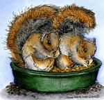MM9986 Squirrel Pair In Dish