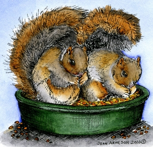 Squirrel Pair In Dish MM9986