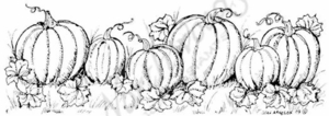 N7037 Pumpkin Patch With Leaves Border