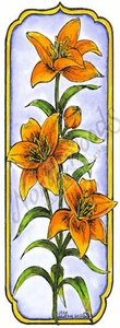 N8512 Tall Framed Tiger Lily