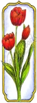 N8517 Tall Framed Tulip