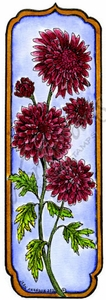 N8697 Tall Framed Mum