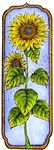 N8699 Tall Framed Sunflower
