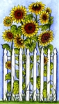 NN10101 Vertical Sunflowers And Fence