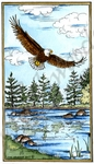 NN10221 Lania's Soaring Eagle In Rectangle Frame