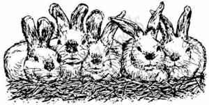 O397 Bunnies In A Row