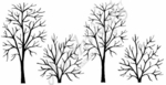 O7140 Large & Small Bare Branch Border
