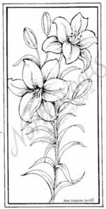 O7273 Lilies In Rectangle