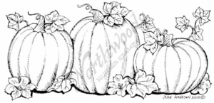 O7600 Three Large Pumpkin Border With Leaves