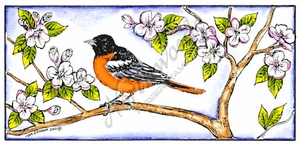 O8427 Baltimore Oriole Rectangle