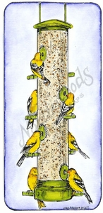 O8429 Goldfinches At Feeder