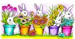 O8447 Bunnies And Flower Pots