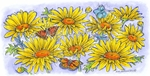 O8510 Daisies And Butterflies Border