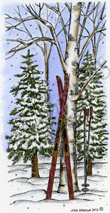 O8820 Skis On Tree In Woods