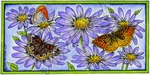 O8981 Three Butterflies On Wild Aster Frame