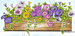 O9070 Petunia Window Box
