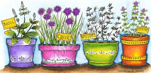 O9075 Basil, Chives, Rosemary And Thyme Pots
