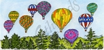 O9558 Hot Air Balloons Over Pine Forest