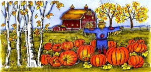 O9843 Scarecrow, Pumpkin Field With Birch And Barn