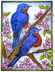 P10181 Bluebird Pair On Blossoms In Rectangle Frame