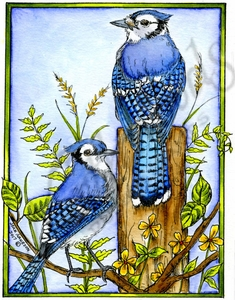 P10190 Blue Jay Pair On Post In Rectangle Frame
