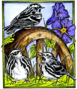 P10198 Black And White Warblers On Wheel In Rectangle Frame