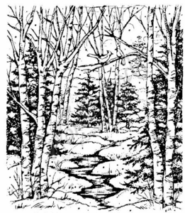 P1939 Forest Stream